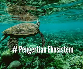 # Pengertian Ekosistem