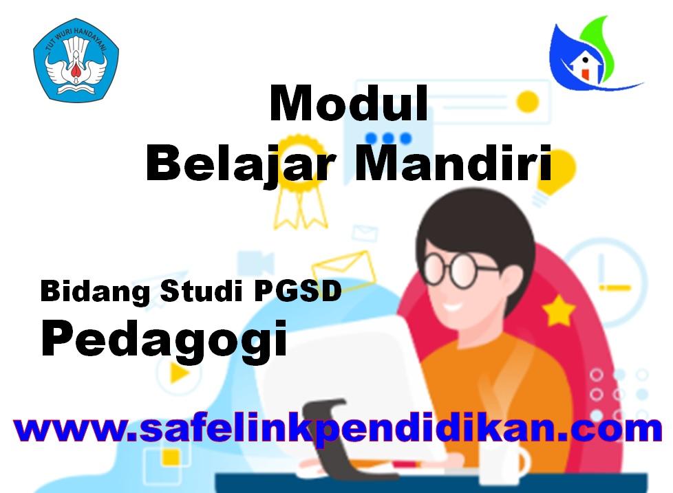 Modul Belajar Mandiri Pedagogi PGSD