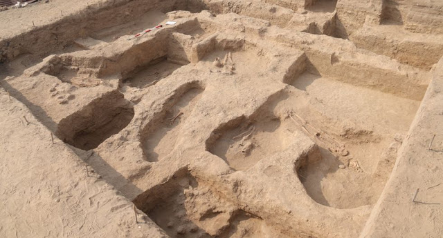 Eleven skeletons found in 1,000-year-old Moche grave in Peru