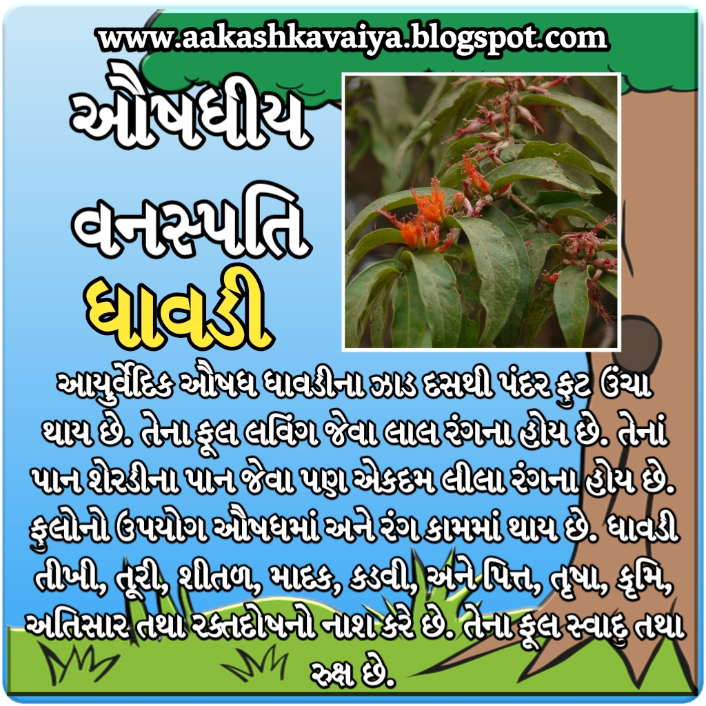 Ayurved in gujarati