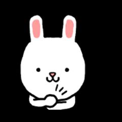 Meichan rabbit