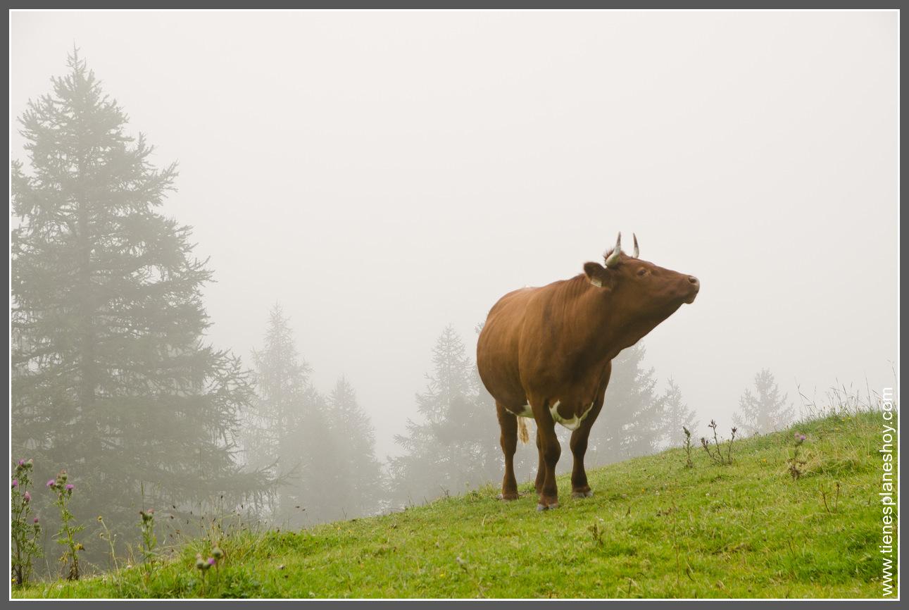 13 d as en austria d a 13 valle de stubai madrid for Oficina turismo munich