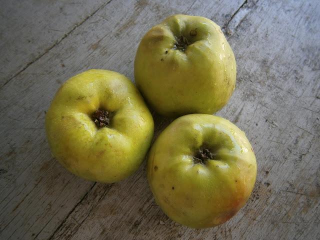 manzana fresca y sin cocinar