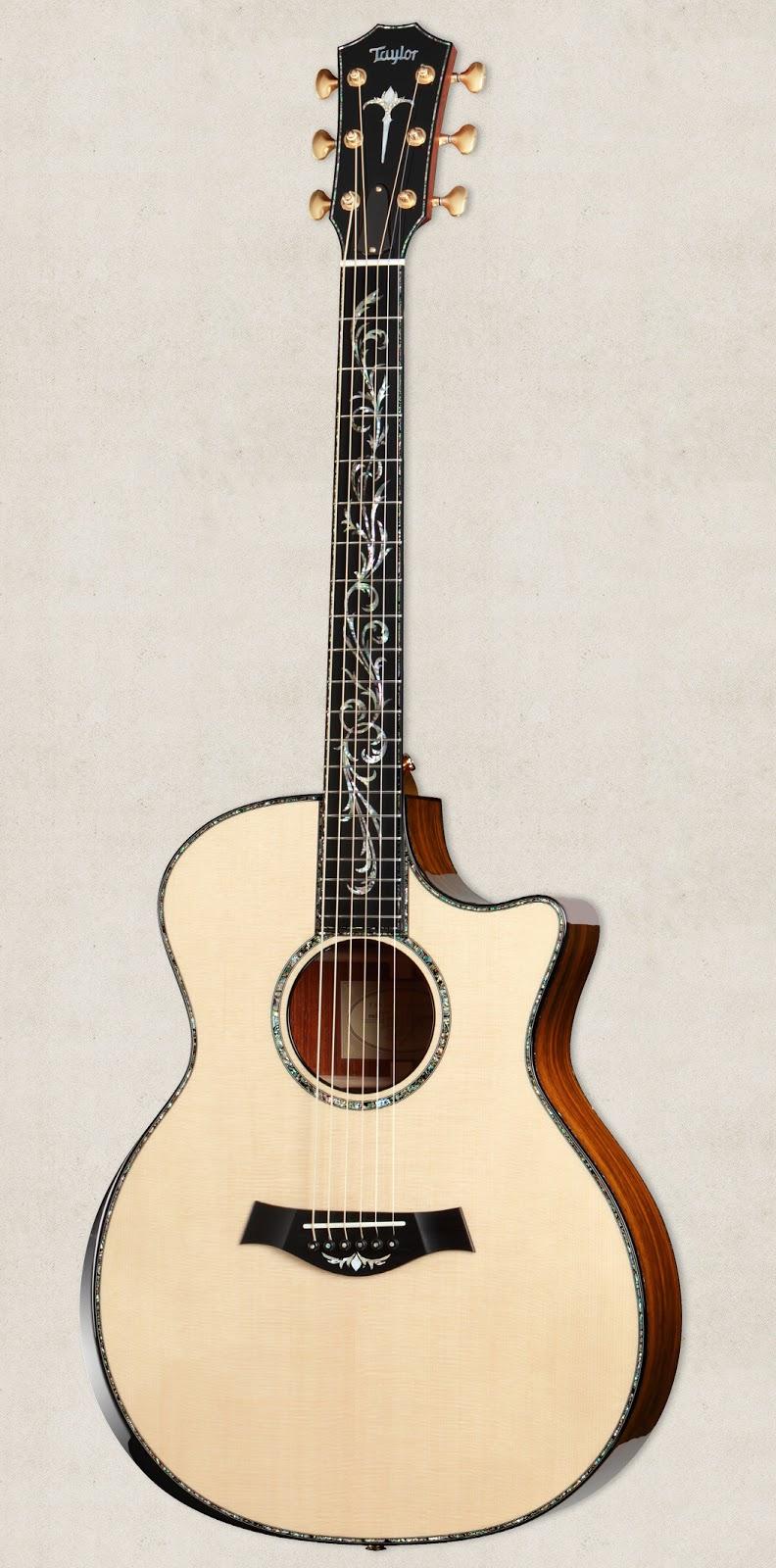 Taylor Guitars: Februa...