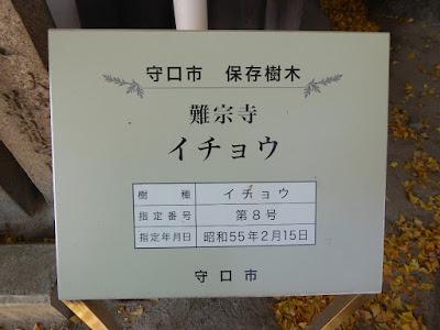 守口市 保存樹木 難宗寺(なんしゅうじ) イチョウ  第8号