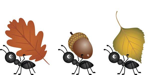 Hormigas Animadas. Simple Cuadro Dibujos Animados D Hormiga. Top ...