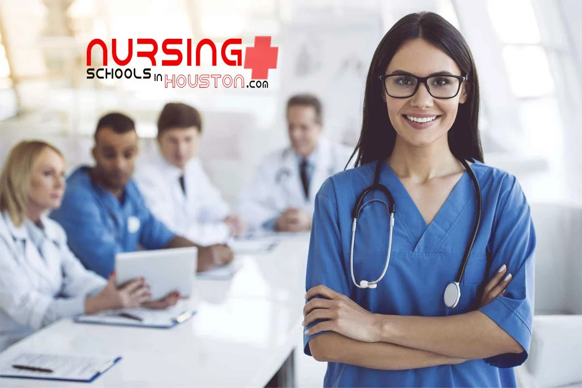 lvn programs in houston texas
