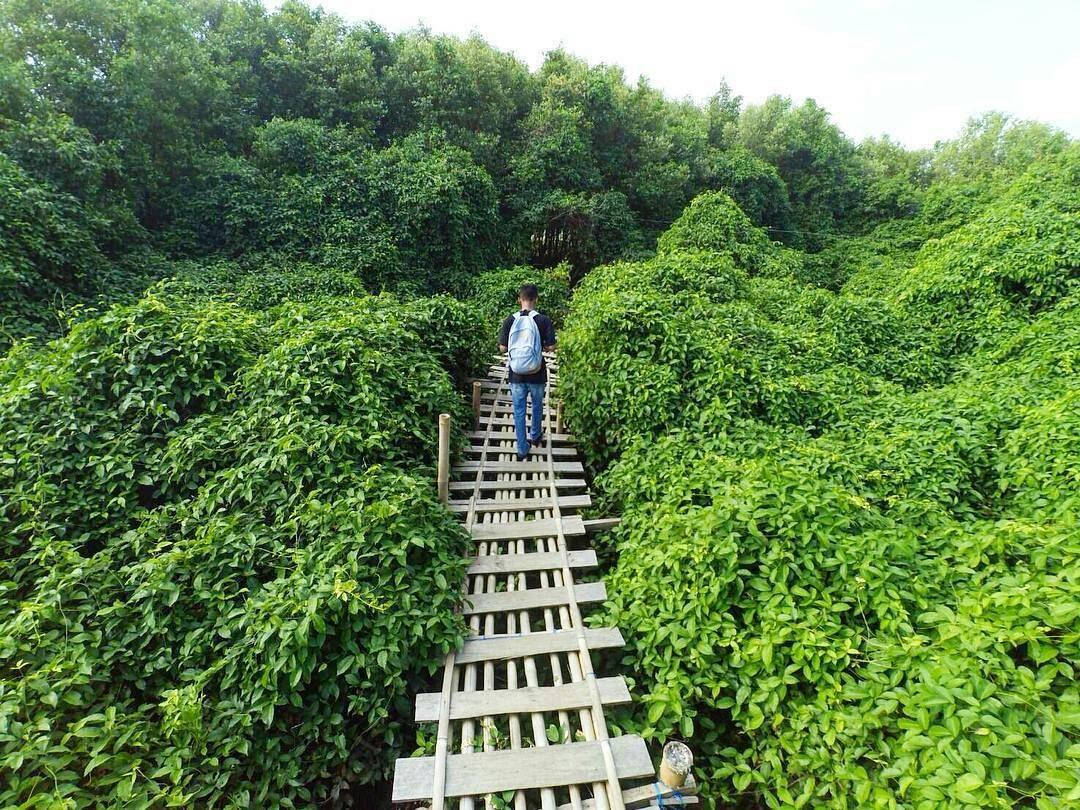 Tempat Wisata Alam Terbaru Di Jogja Hotel Amalia Malioboro