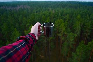 Bersahabat dengan hutan (pixabay)