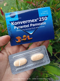 Konvermex