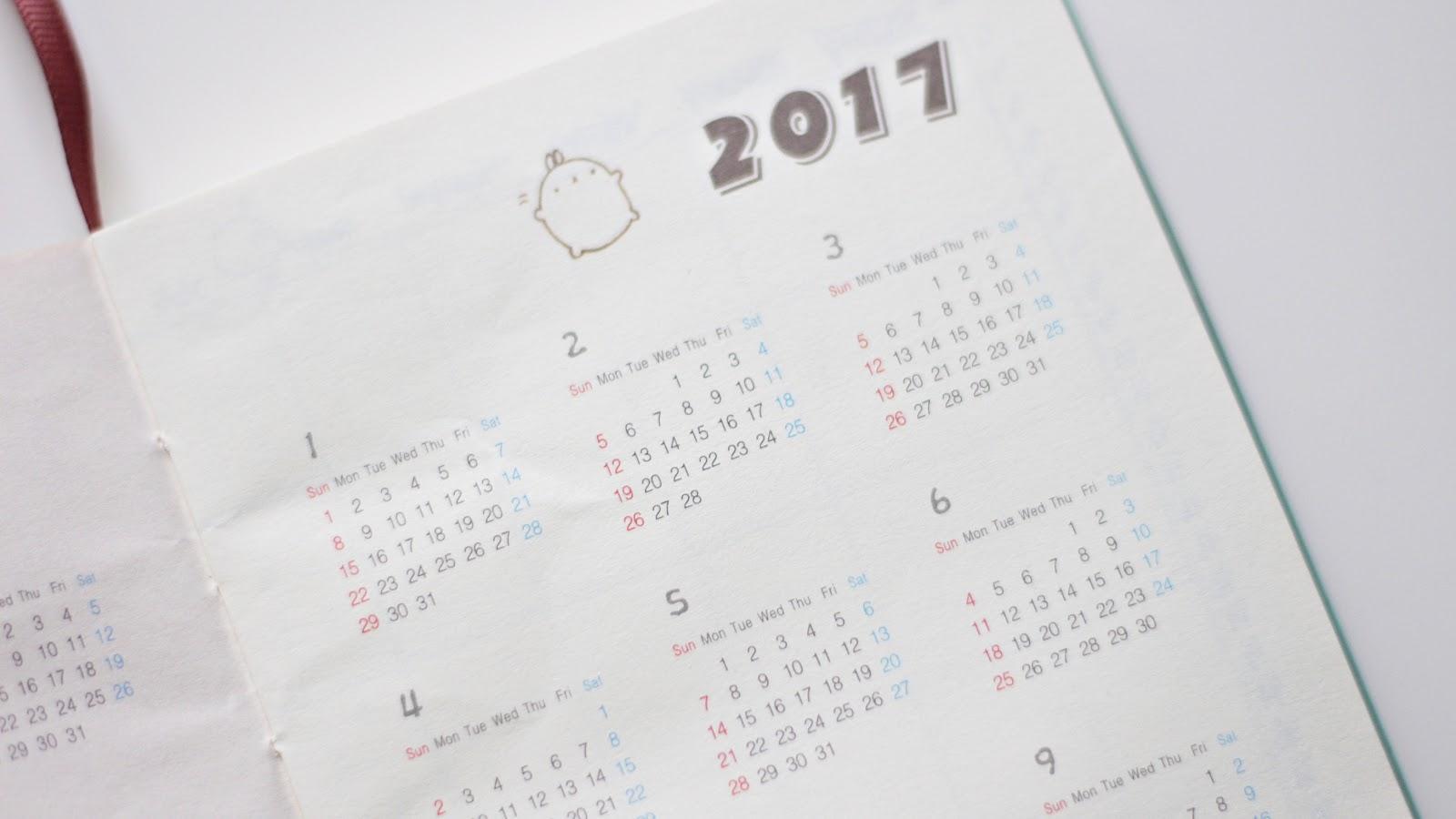 Molang Diary