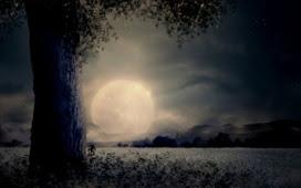 Начало рассеивающей Луны 10 сентября 2020 года: астрологи о тайных знаках осени