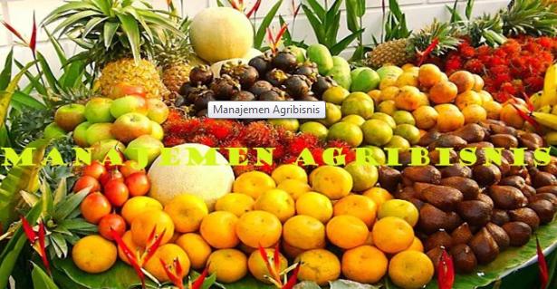 Pengertian Manajemen Agribisnis Beserta Fungsi, Contoh Dan Ruang Lingkupnya Terlengkap