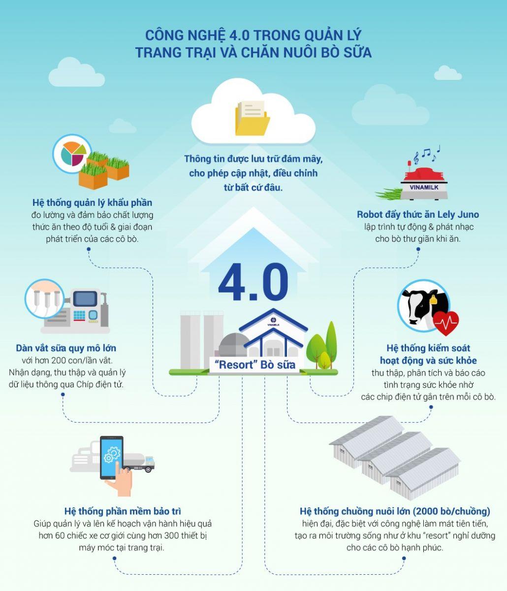 Tại sao chăn nuôi bò sữa lại phát triển mạnh ven các thành phố lớn như Tp. Hồ Chí Minh, Hà Nội...?