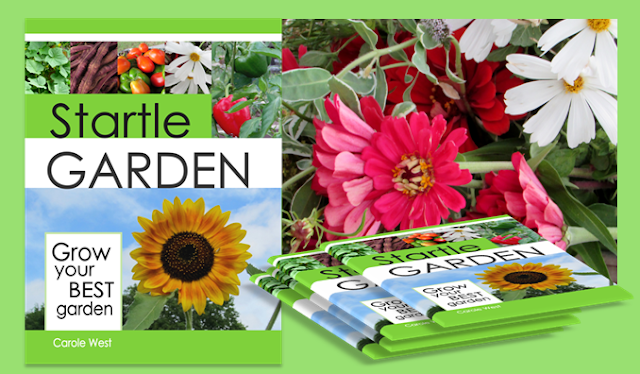 book-tips-garden-work-book-soil-seeds-jemma