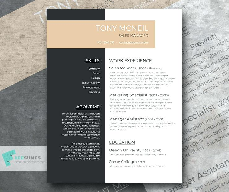 Professional resume services online payment