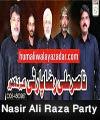 http://www.humaliwalayazadar.com/2015/04/nasir-ali-raza-party-nohay-2008-to-2016.html
