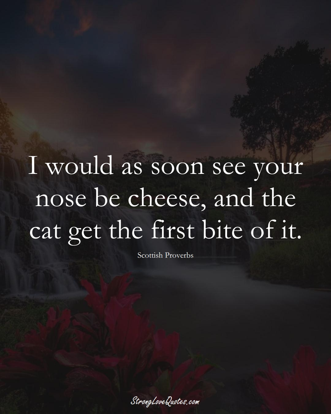 I would as soon see your nose be cheese, and the cat get the first bite of it. (Scottish Sayings);  #EuropeanSayings