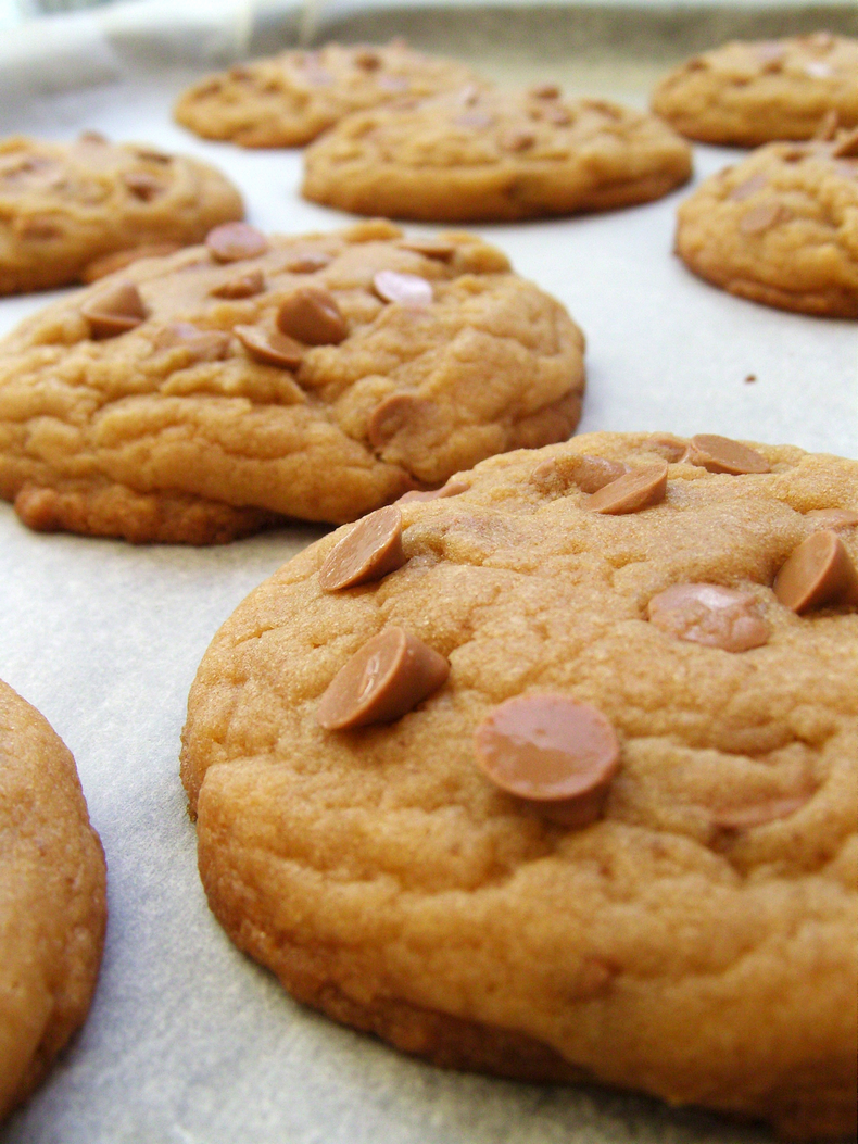 Delicious brown butter cookies with caramel or butterscotch chips make a perfect any time of day snack