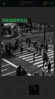 275 слов на переходе идут пешеходы по зебре 2 уровень