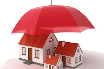 4 Best Insurance Options for Property