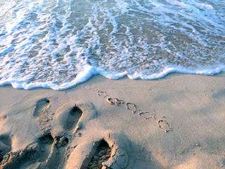 Sand beach with fish and foot prints stock image