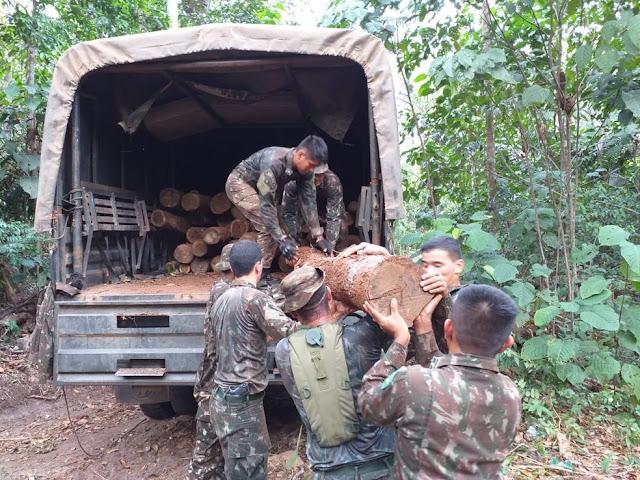 Oito pessoas são detidas durante Operação Verde Brasil em RO, diz Exército