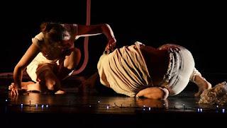 TRC Danza 2016