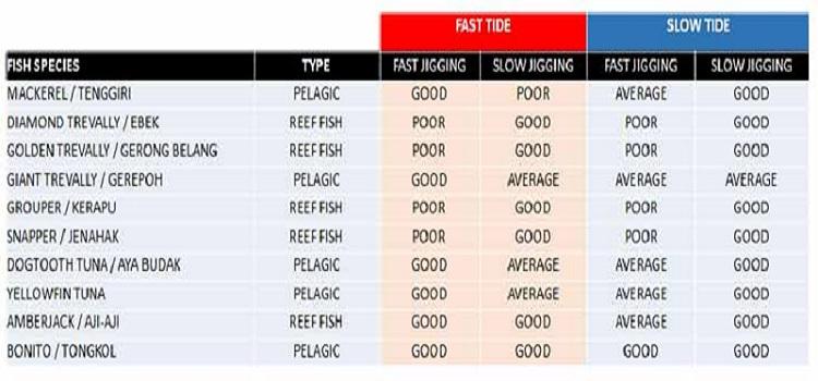 Ikan Target Mancing Jigging