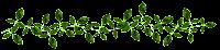 Ramo folhas verdes png