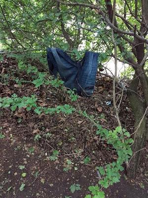 """Niatnya Antar Anak, Ibu Ini """"Syok"""" Ada Lokasi Prostitusi di Balik Hutan yang Berjarak Hanya Beberapa Meter dari Sekolah Anaknya"""