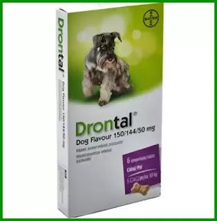 Drontal Dog Plus pareri forum mod de utilizare si contraindicatii