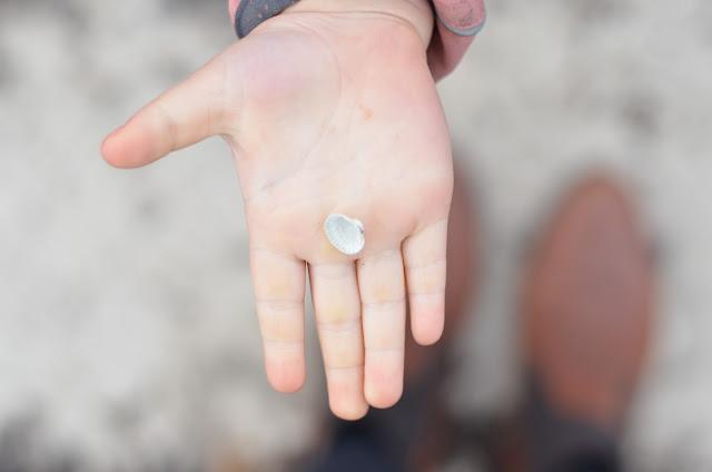 Muscheln Kinderhand