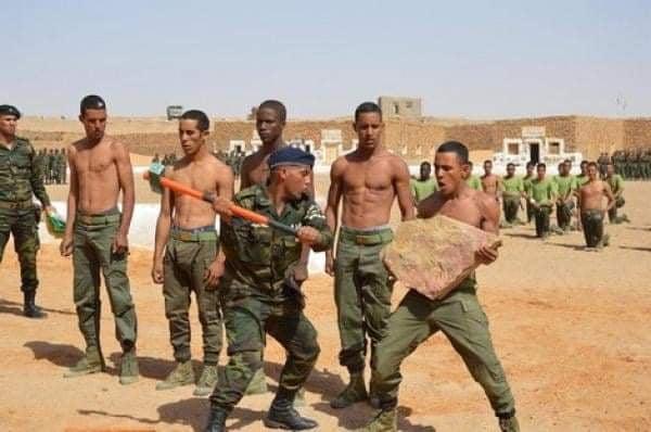 """""""البوليساريو"""" تزعم قصف """"المحبس"""" أحد مواقع المناورات العسكرية المغربية الأمريكية"""