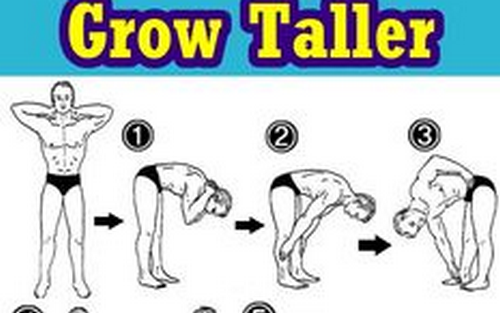 Grow taller exercise - Yoga for complete beginners