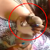 UNBELIEVABLE: Video of a Puppy Breastfeeding to a Lactating Woman?