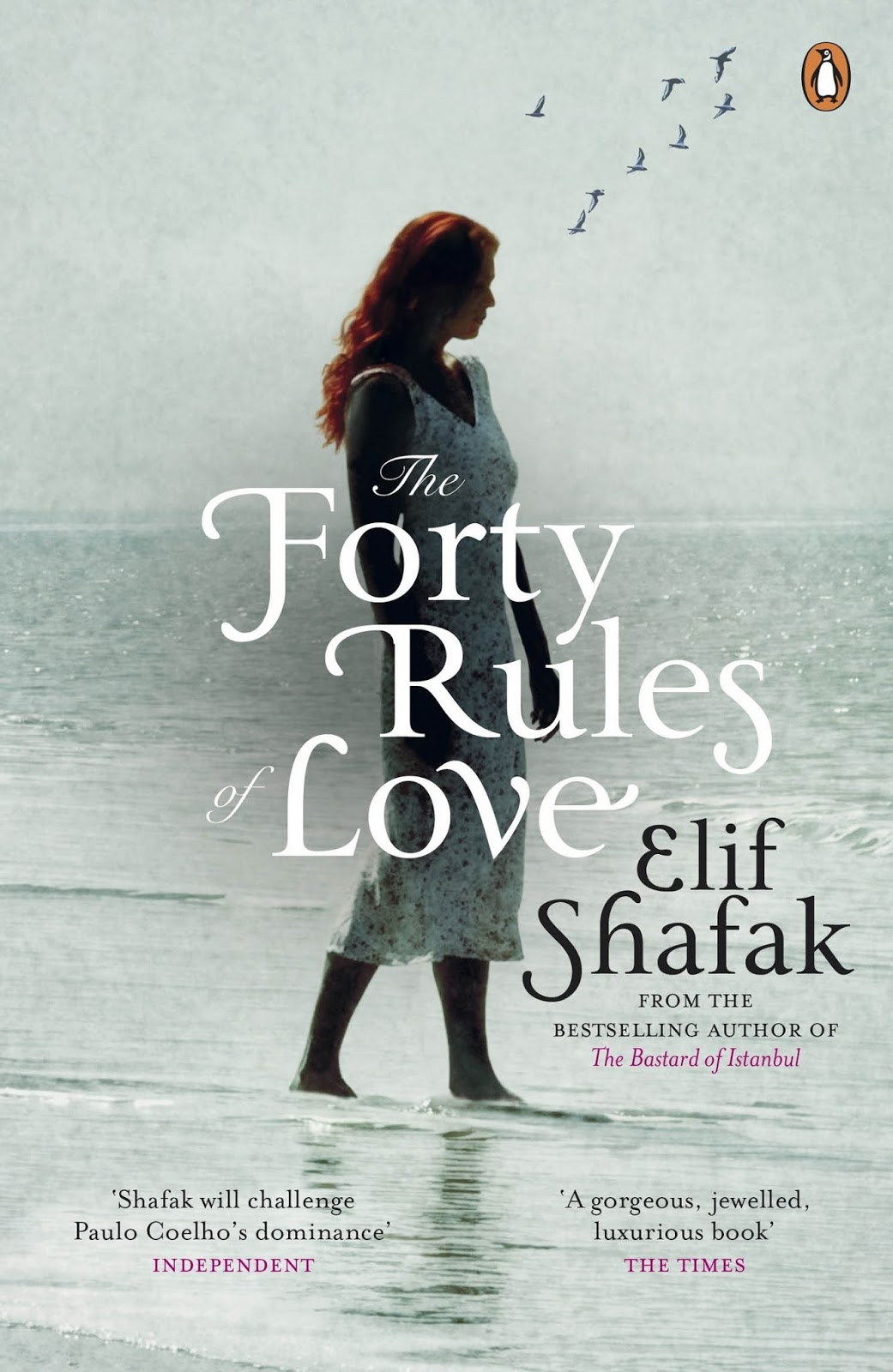 The Forty Rules Of Love Pdf Urdu Translation