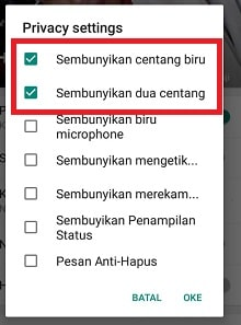 cara pesan whatsapp hanya ceklis 1 tetap online