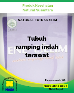 Natural Extrak Slim 21 Sachet