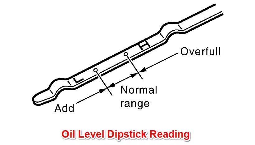 Free Car Diagnostic Image