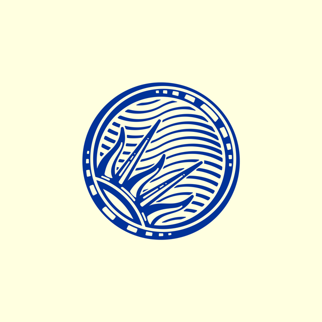 logo bicentenario independencia argentina 200, motion graphics, concepcion del uruguay, benjamin casanova