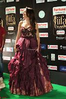 Pragya Jaiswal Sizzles in a Shantanu Nikhil Designed Gown  Exclusive 097.JPG