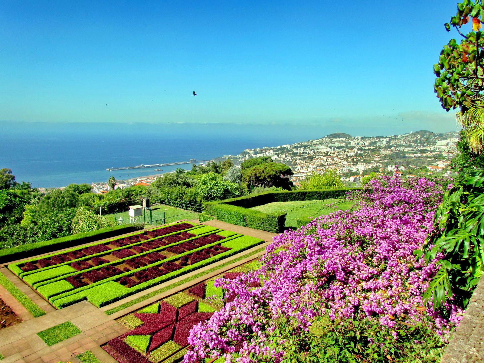 Madeira botanic garden
