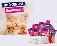 Concorso Vitakraft : vinci gratis pacchi per il tuo gatto