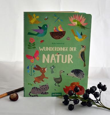 Wunderdinge der Natur von Britta Teckentrup, Kinderbuch