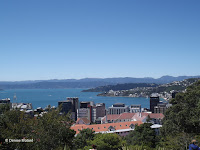 City view from cable car stop - Wellington Botanic Garden, New Zealand