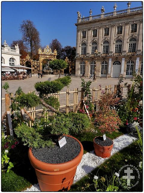 NANCY (54) - Jardin éphémère 2018 - Les photos !