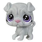 Littlest Pet Shop Keep Me Pack Grooming Salon Grady (#No#) Pet