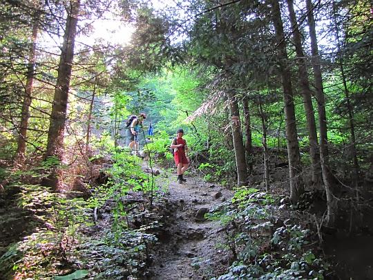 Ścieżka do dolinki potoku Świętokrzyskiego