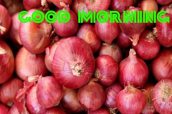 Wish You  Onion Good Morning